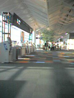 20051012_46433.jpg