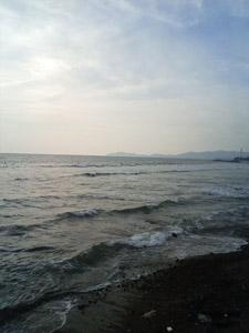海の画像。