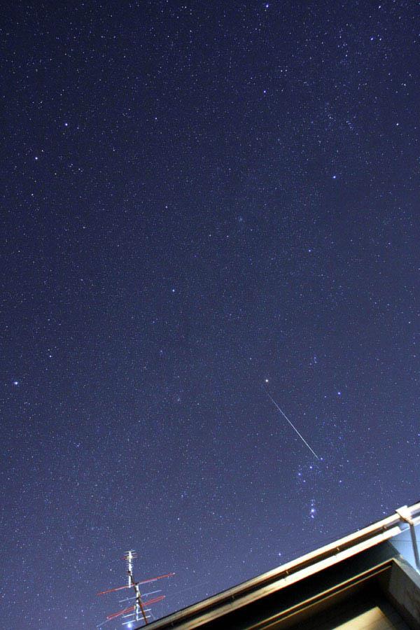 オリオン座を横切るふたご座流星
