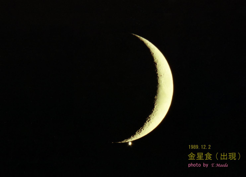 1989金星食(前田)