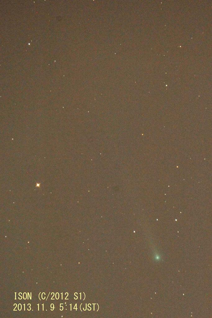 131109アイソン彗星(maeda)