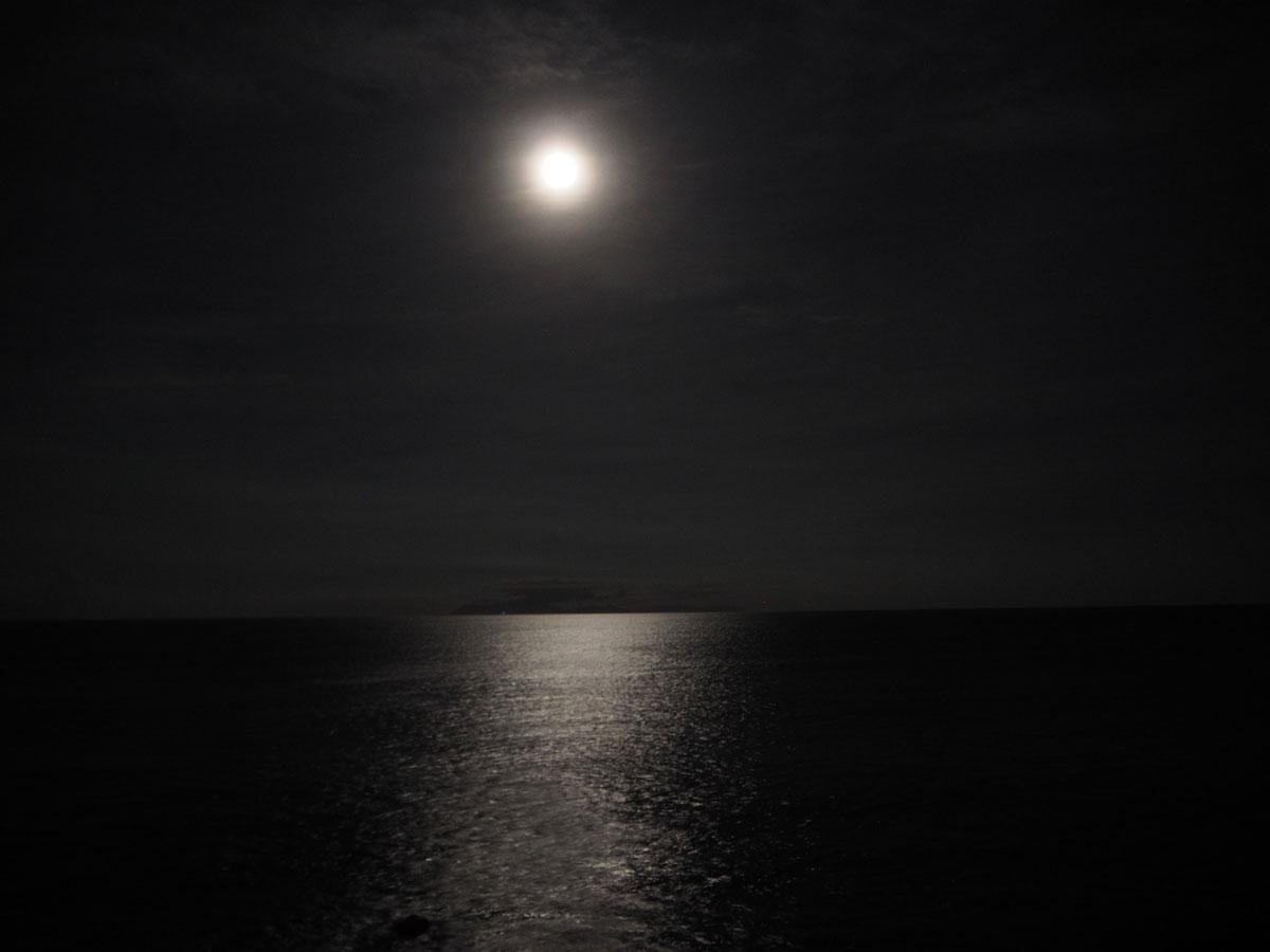 160917月夜P9171587(kawakita).jpg