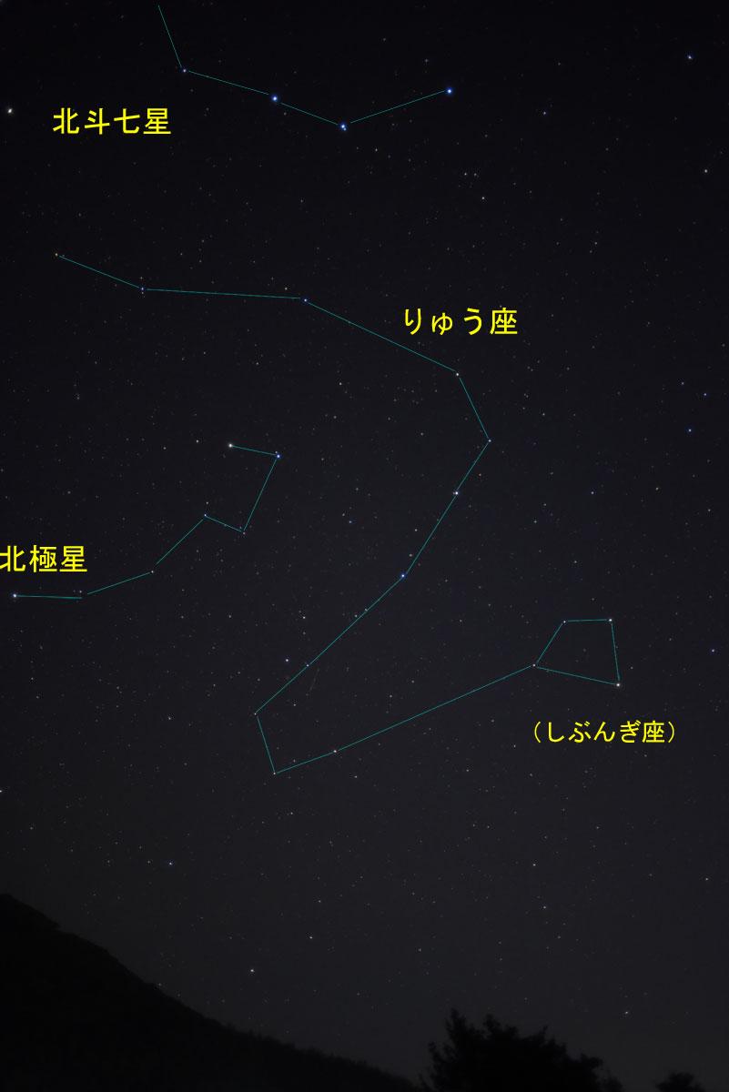 170101りゅう座_2505(maeda)