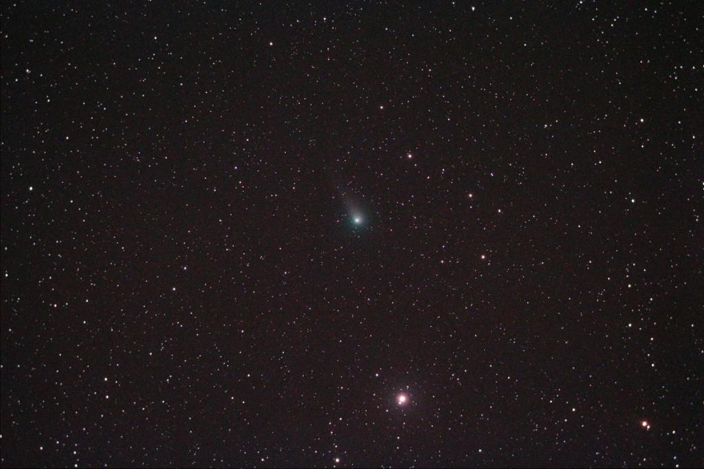 170519-0025ジョンソン彗星S(morinaga)
