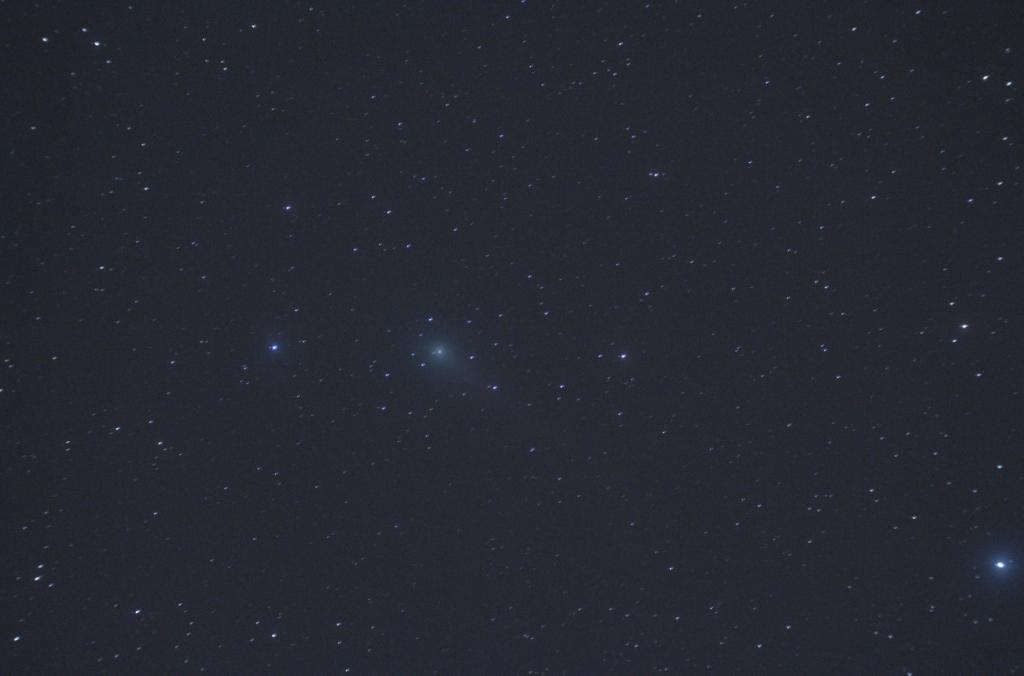 170528ジョンソン彗星s(morinaga)