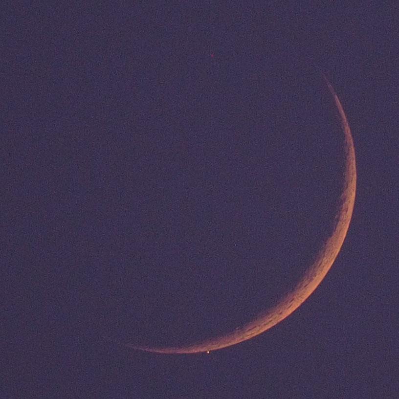 170725水星食P7252133c