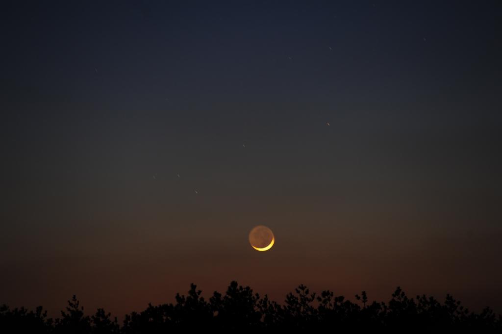 180217細い月(fuchi)