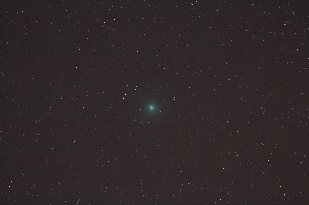 岩本彗星20190209s