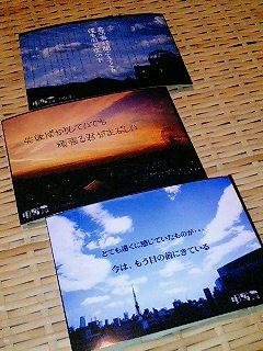 20061014_101881.jpg