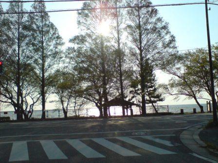 20090428 湖岸の西日