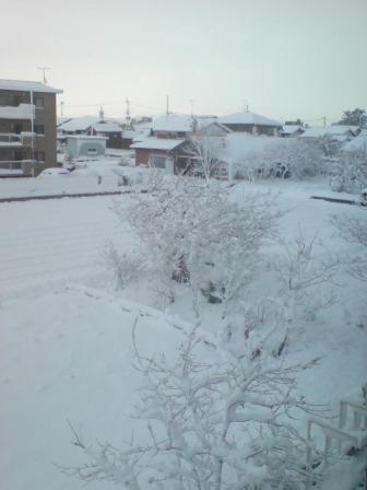 20091219 初積雪