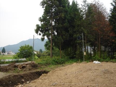 20100625 仮設電気.JPG