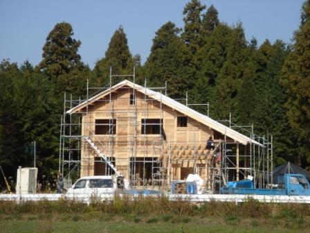 20101129 お家大工工4日目