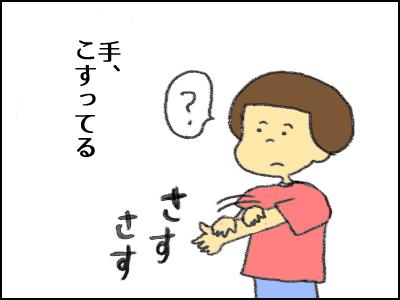 20170625_10.jpg