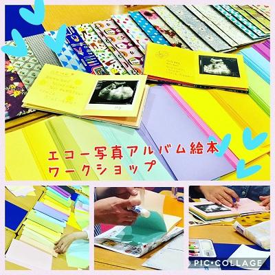 エコー写真アルバム絵本WS201804