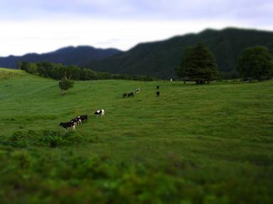 day3_farm.jpg