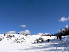 雪原を歩く