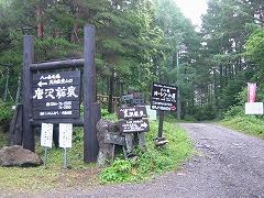桜平への林道