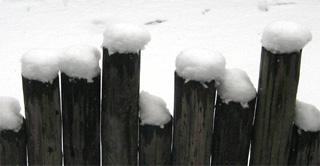 2月3日10時の積雪