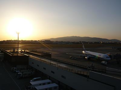 伊丹(ANA|飛行機)