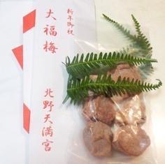 大福梅1.JPG
