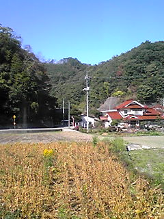 091023_1025~01.JPG