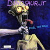 dinosaur_jr_feel_the_pain