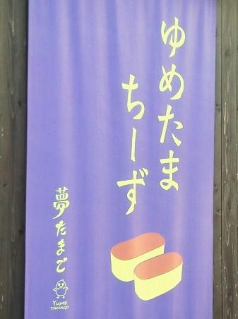 夢たまご コトリラボ 小鳥研究室  kotori lab 3.jpg