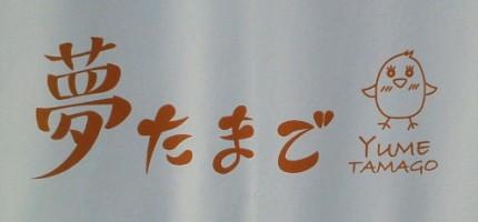 夢たまご コトリラボ 小鳥研究室  kotori lab .jpg