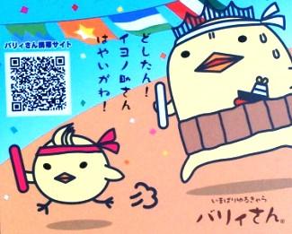 今治 バリィさん コトリラボ 小鳥研究室 kotori lab 2.jpg