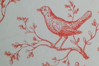 ノート コトリラボ 小鳥研究室 kotori lab 2.jpg