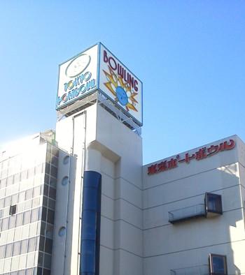 東京ポートボウル コトリラボ 小鳥研究室 kotori lab.jpg