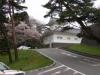 仙台隅櫓の桜