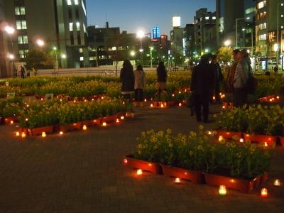 3.11さかい灯りの花広場