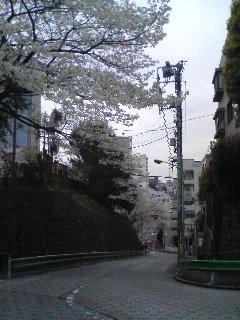 20070331_210035.jpg