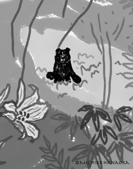 神々たちの遊ぶ庭ー熊