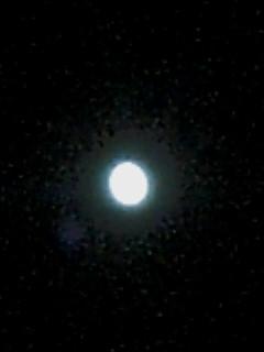 20061009_251684.jpg
