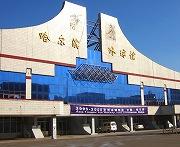 女子世界選手権の舞台となるハルビン市氷球館