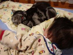 おきてしまった長男、寝たままのチョウニャン