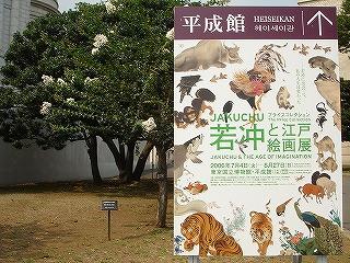 若冲と江戸絵画展