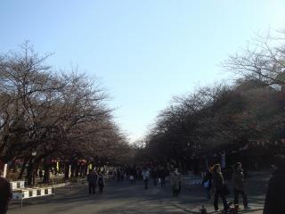 上野公園07