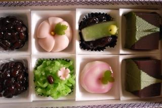 塩埜・上生菓子