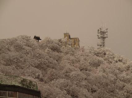 雪の筑波山3