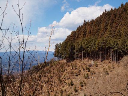 武甲山浦山口5