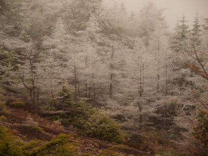 黒斑山20120511�