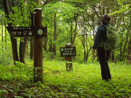 20120603ツツジ山
