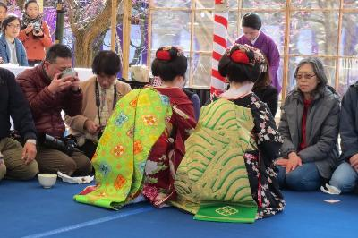 梅花祭 舞妓 近江社中