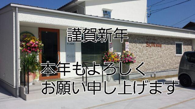 IMG_20170101_3376.jpg