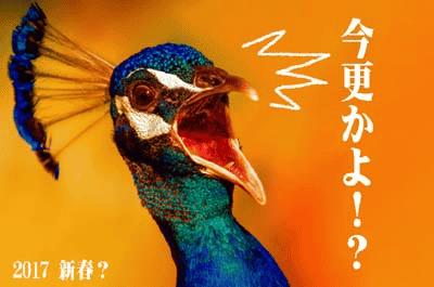 20170125 01