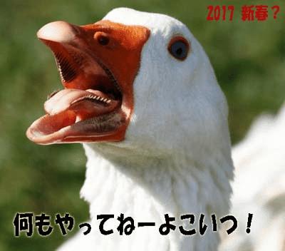 20170125 02